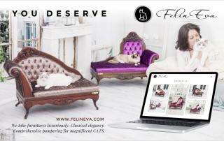 Luxury cat sofa website